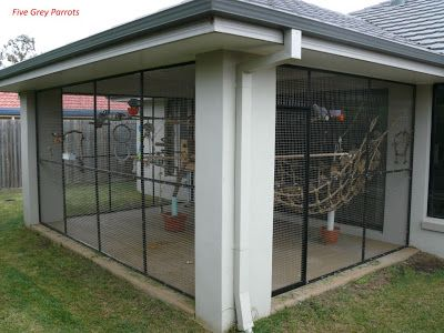 Pet room/ bird-room.jpg (400×300)