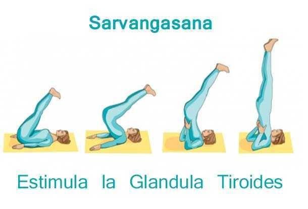 Asana de Yoga para equilibrar Hiporitoidismo. Algunas veces y a pesar del tratamiento que estemos tomando, necesitamos darle al cuerpo un ...