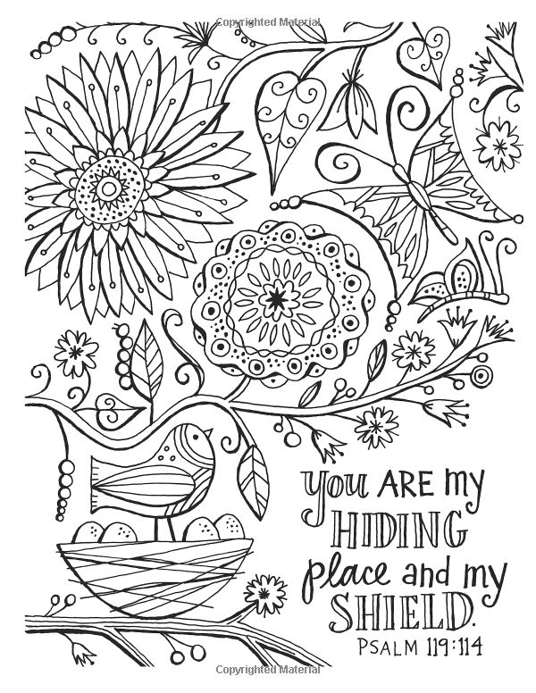 Color The Promises Of God An Adult Coloring Book For Your Soul