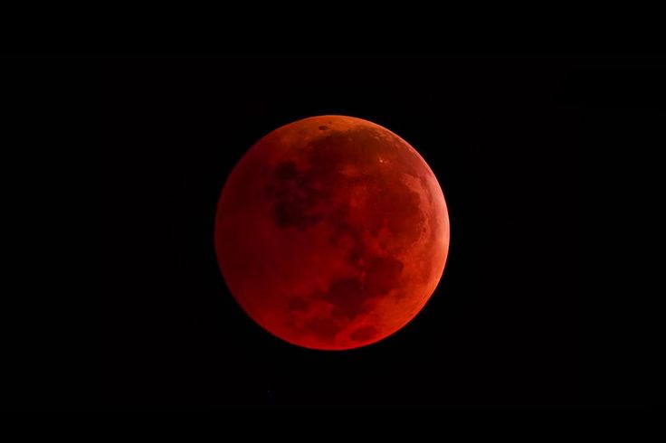 """Waiting for Jesus: Many Christians believe the recent and rare celestial event known as a """"blood moon"""" is a sign that the End Times are upon us and the return of Christ is near."""