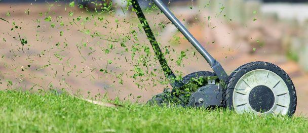 """We often hear people say """"I love the smell of fresh cut grass"""" but the grass don't feel the same way. That wonderful smell is a chemical distress signal which means the grass / your lawn is actually screaming with pain."""
