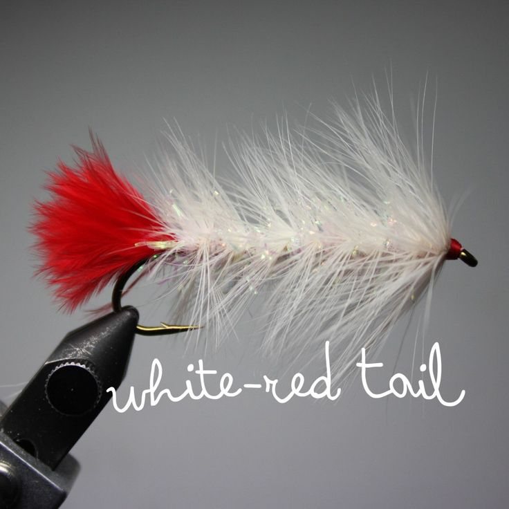 pyramid-lake-woolly-worm-white-red-tail