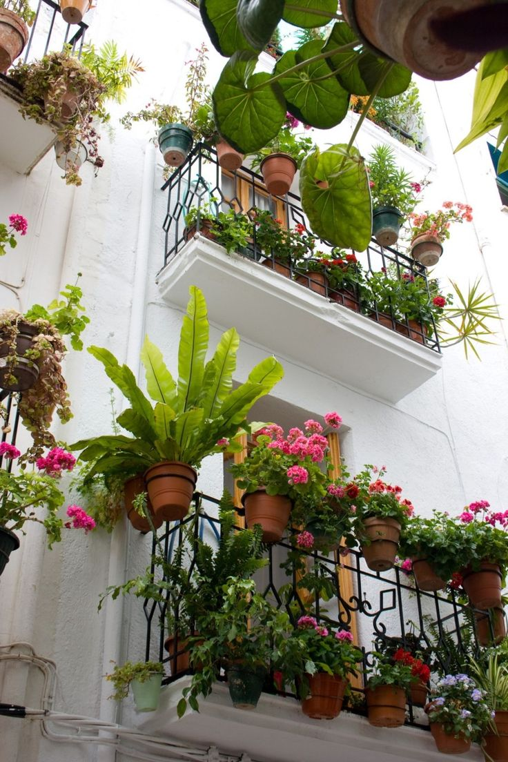 A balcony garden in france the french have a special knack for Small balcony garden ideas
