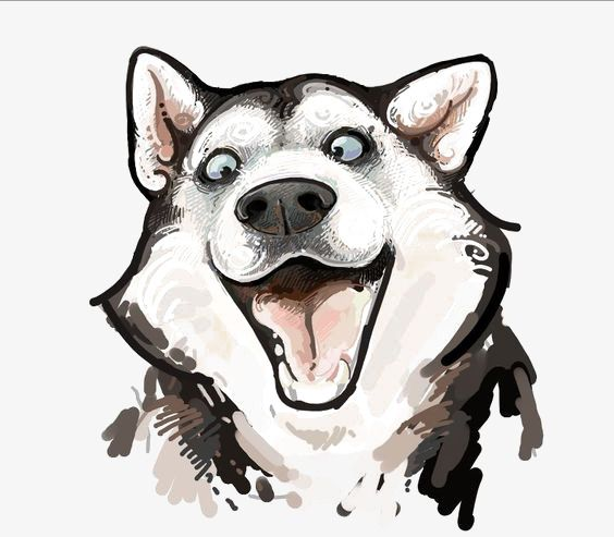 Husky Watercolor Red Dogs Watercolor Clipart Husky Png And Vector With Transparent Background For Free Download Dog Drawing Husky Drawing Dog Art