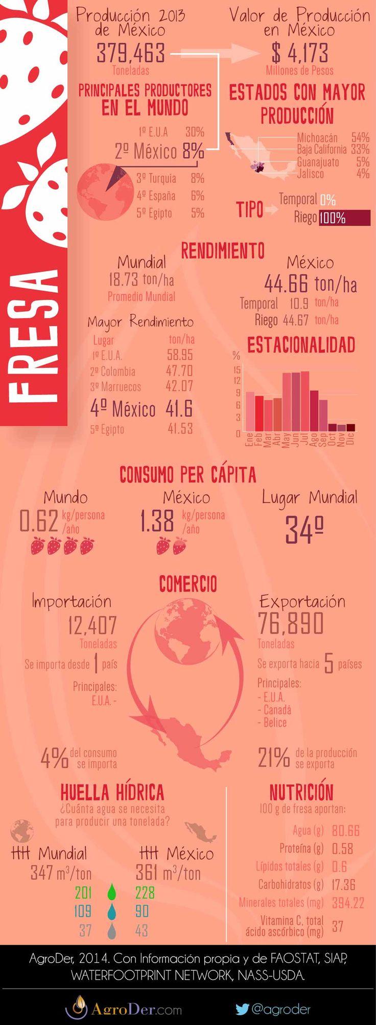 Infografía - Fresa en México, 2013.