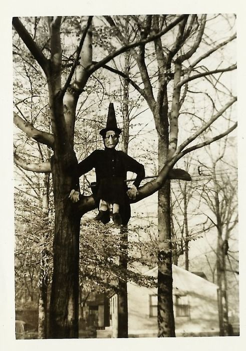 Witch in tree