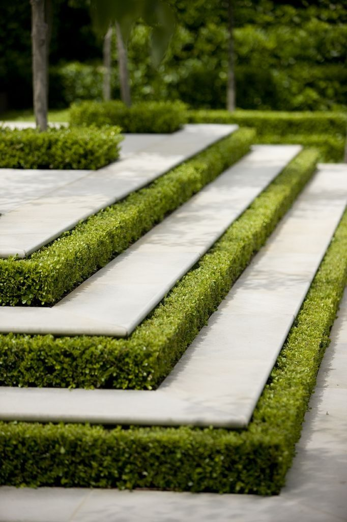 Box risers, garden designed by #peterfudge
