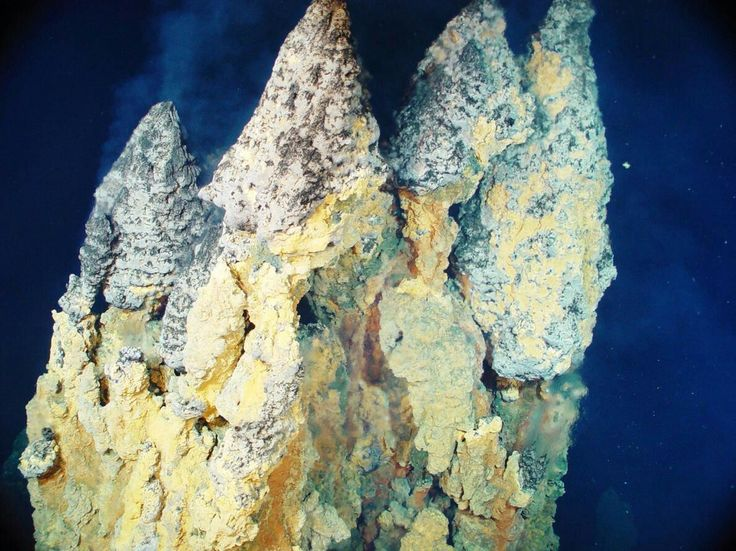 🐠🦀🐠SMOKERSSuperheated water laden with metals like iron, copper, and zinc sulfide builds up towering chimneys in an image taken in the Western Pacific Ocean's Mariana Arc region. These towers are about 30 feet (9 meters) tall🐠🦀🐠