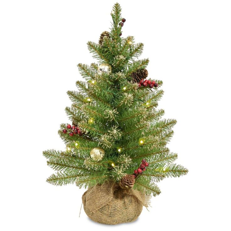 2 ft. Glittery Gold Dunhill Fir Tree with Battery Operated LED Lights, Greens