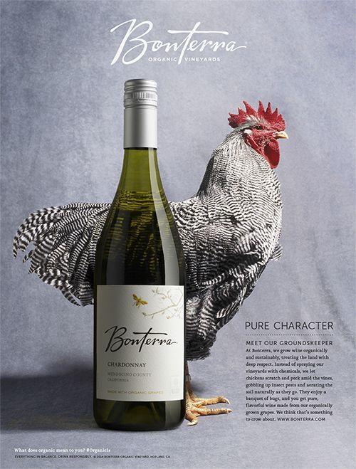 Our most recent ad for eco-sustainable winery Bonterra Vineyards.