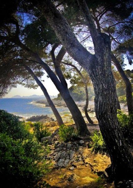 Antibes - Costa Azzurra, France