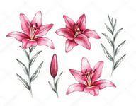 цветы рисунки: 11 тыс изображений найдено в Яндекс ...
