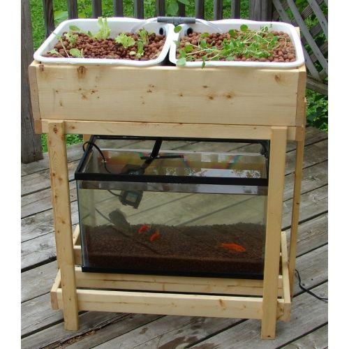 1000 images about aquaponics hydroponics aeroponics on for Hydroponics aquaponics