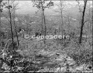 feb-1945 prigionieri tedeschi monte belvedere e un paio di soldati della decima divisione di montagna