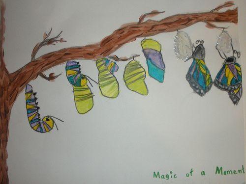 pta reflections the magic of a moment essay