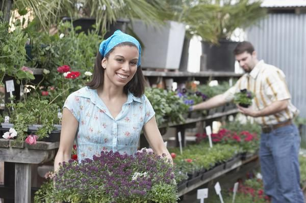 Marketing Plans for a Plant Nursery | Business & Entrepreneurship - azcentral.com