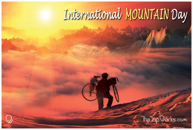 Ever celebrated international mountain day before? If not, start with #TheTripWorks