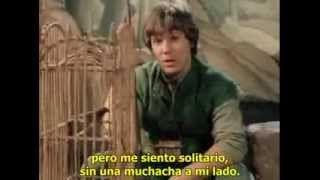 la flauta magica damrau español - YouTube