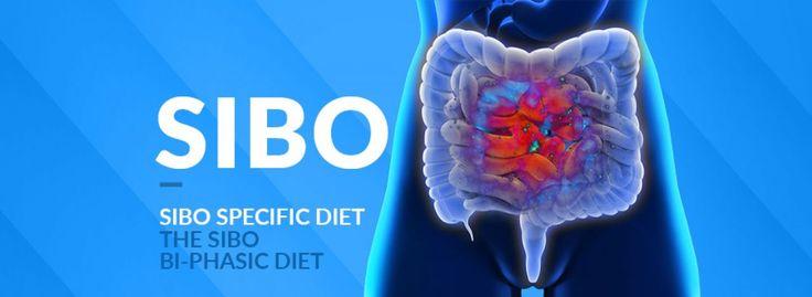Dieta w SIBO