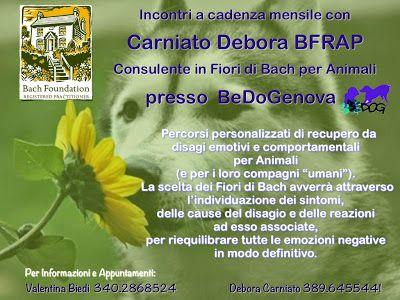 Almalotus ........ di Debora Carniato BFRAP   Consulente in Fiori di Bach per Animali: CONSULENZE A GENOVA