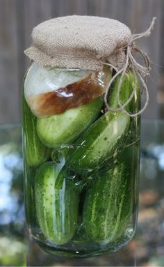 E.A.T.: Hungarian Kovaszos Uborka (Sour Pickles) I would like to try these