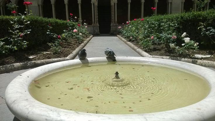 Chiostro, fontanella, Basilica di San Paolo, #Roma