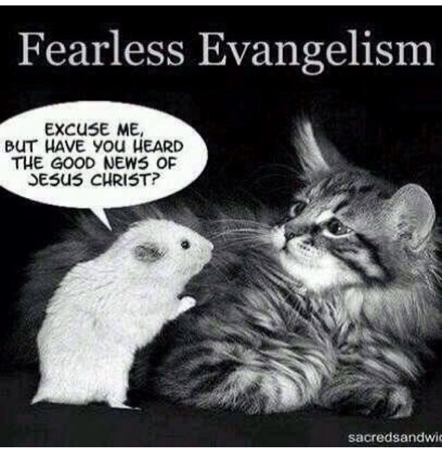 Fearless Evangelism Quot Excuse Me But Have You Heard The