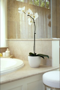 Orchids add elegance to any bathroom, and I would love to have a big tub surrounded by orchids.