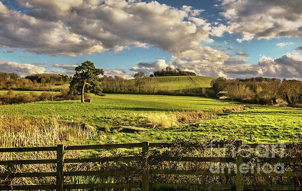 Round Hill from Little Wittenham by Ian Lewis