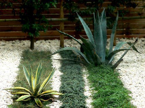 gravel plant stripes Modern Japanese Landscape Pinterest