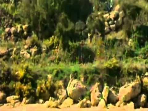 DE REDITU -IL RITORNO (FILM COMPLETO)