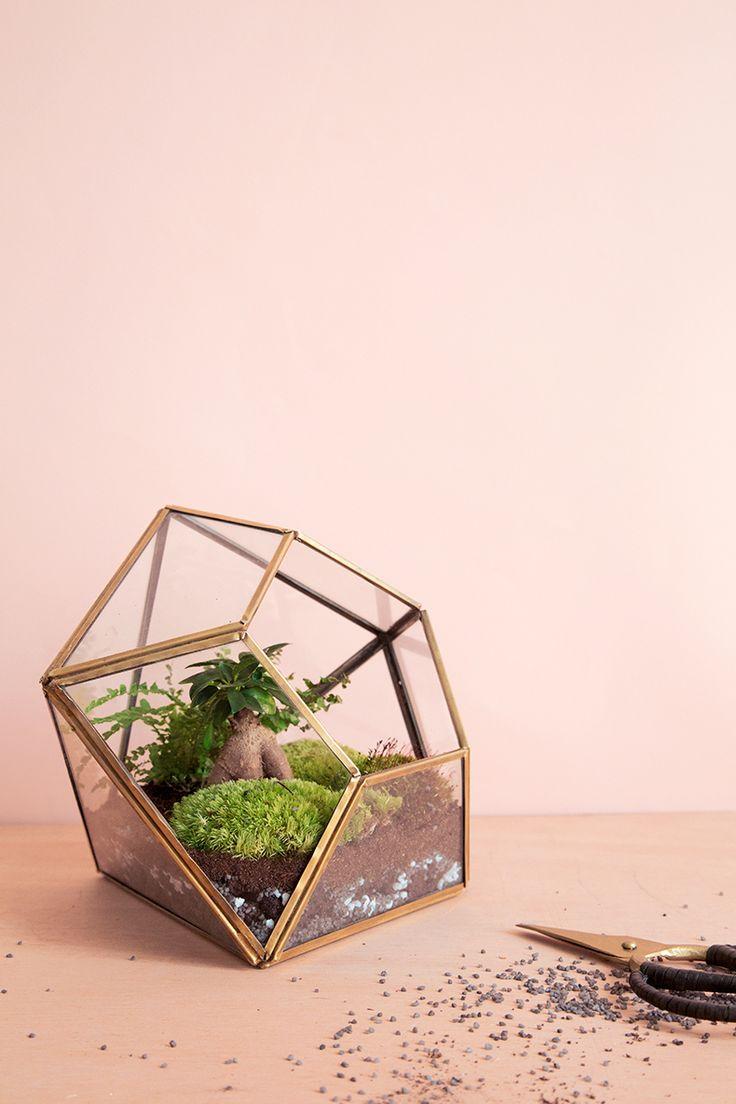 Terrarium à faire soi-même | Mamie Boude