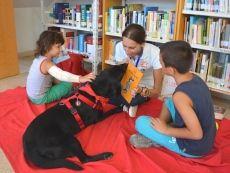 La Concejalía de Cultura del Ayuntamiento de Alicante está llevando a cabo el programa de animación a la lectura con los perros lectores \