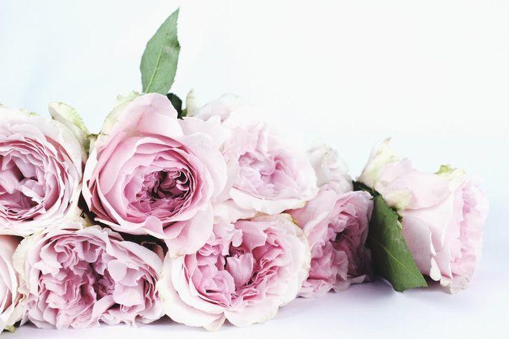 Bom dia Flores!   Prevenir é uma das melhores formas de lutar.   Se toque, se ame.   #outubrorosa #pinkoctober