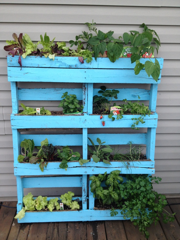 Check out my pallet herb planter herb garden for Herb pallet