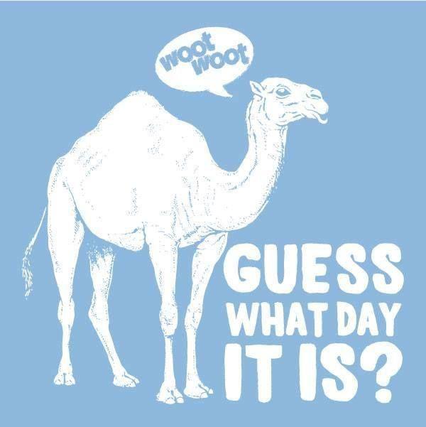 Happy Hump Day!!!