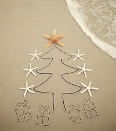 Christmas Tree in the Sand! Found at Hilton Head Island - TravelTell Facebook page.