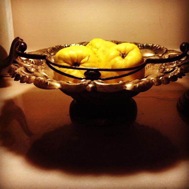 marmelos#quince#fruit#autumn#yellow#atmospheare#dazulterra#lourézio