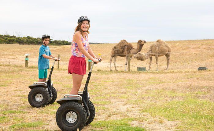 Glen Forest Tourist Park - Port Lincoln South Australia