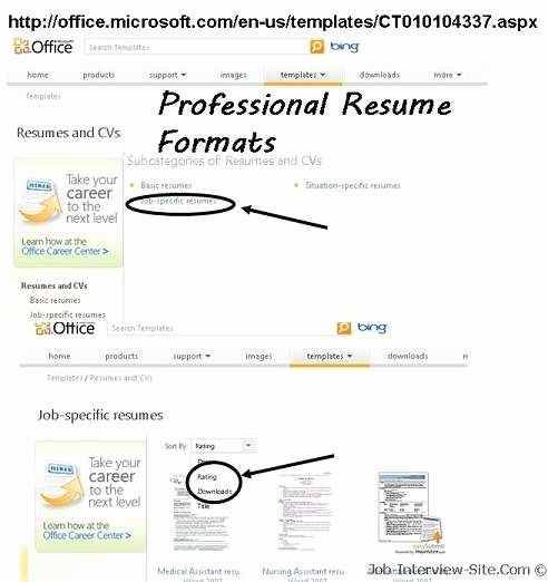 Best 25+ Format of resume ideas on Pinterest Resume writing - resume format for bca freshers