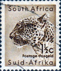 South Africa 1954 Wild Animals Warthog Fine Mint SG 151 Scott 200 Other African…