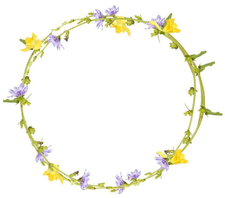 images for floral wreath with transparent background google search rh pinterest com lavender wreath clipart lavender wreath clipart