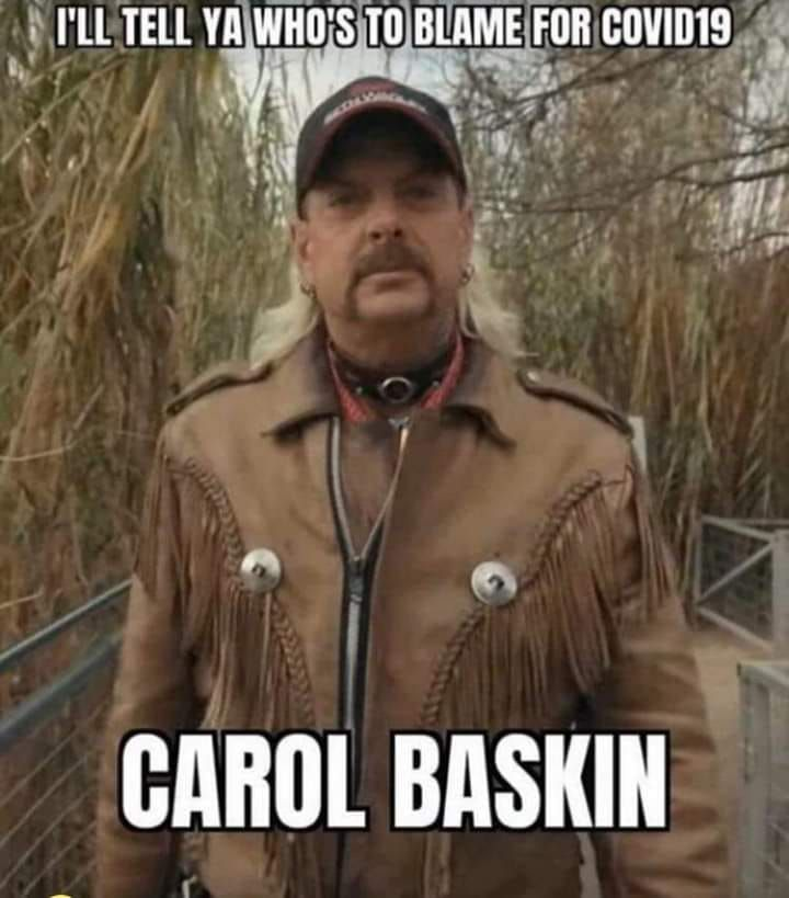25 Hilarious Carole Baskin Memes Netflix S Tiger King Villain King Meme Inappropriate Memes Hilarious