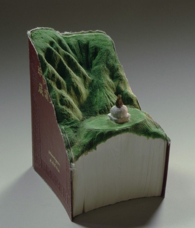 This man has carved out books into topographical caves, mountains, and even water. Beautiful.