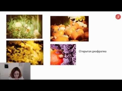 Fotoshkola: Фотография от настроек до идеального кадра. Дарья Булавина - YouTube