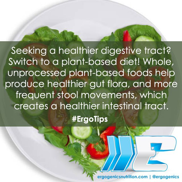 A #plantbased diet will give you a healthier intestinal tract! #ErgoTips