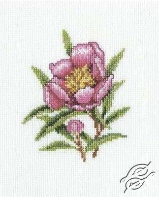 Orleander Flower - Cross Stitch Kits by RTO - C183