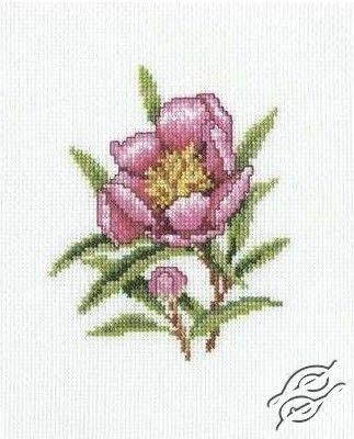 Orleander Flower - Cross Stitch Kits by RTO - C183