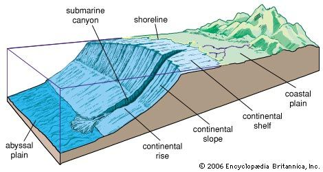 lereng benua :  [Geo] bagian benua di bawah permukaan laut yg berbentuk lereng, mulai dari ujung landaian benua sampai dataran abisal Lereng benua adalah kenampakan permukaan topografi yang paling tinggi, paling curam dan paling panjang di dasar laut (Dietz, 1964, dalam Bloom, 1978).