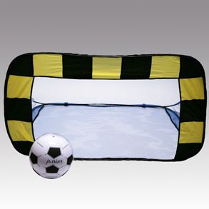 Soccer Carnival Game - i have the soccer nets in my garage!
